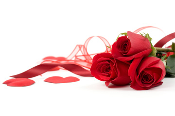 Arreglos Florales Amor y Romance